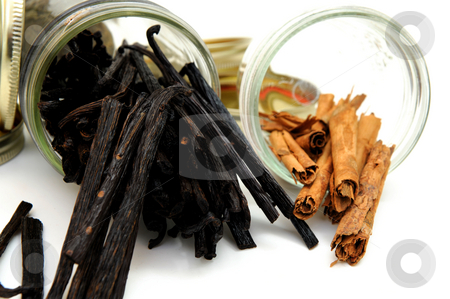 Vanilla Beans And Cinnamon Sticks stock photo, Cinnamon bark and aged vanilla beans in clear glass jars on a white backgrouund by Lynn Bendickson
