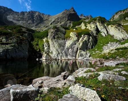 Mountain lake scenery with flower stock photo, Mountain lake scenery with pink flowers in a summer day by Juraj Kovacik