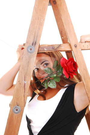 Pretty girl under the stepladder. stock photo, Young, lovely girl in black pants and top, with white shirt holding a red rose in her mouth and sitting under the stepladder, for white background. by Horst Petzold