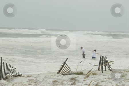 Gustav Surf Swamping stock photo, PENSACOLA - SEP 1: A couple becomes inundated by the incoming surf during Hurricane Gustav on September 1, 2008.  Gustav generated a storm surge of 15 feet. by A Cotton Photo