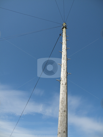 Telegraph Pole stock photo, A british telegraph pole with a blue sky background by Stephen Clarke