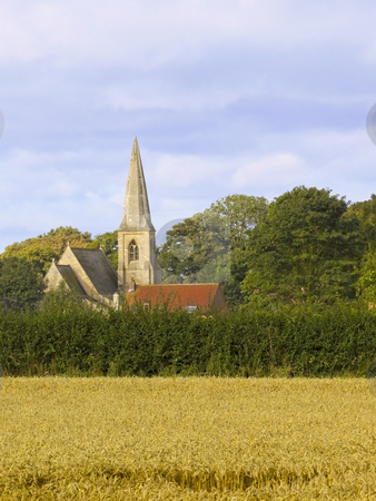 Church in a rural setting stock photo, A view across a field of wheat to a church nestled amongst mature trees by Mike Smith