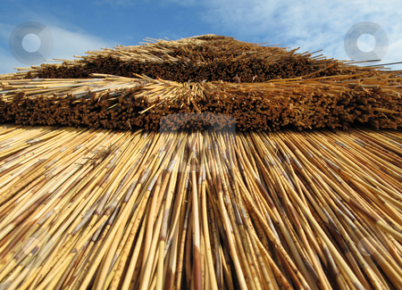 A Thatched roof in gloucestershire stock photo,  by Stephen Clarke