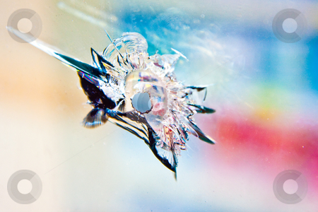 Bullet-Hole stock photo, A jagged bullet hole in a Baltimore storefront. by Tyson Koska