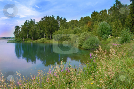 Lake scenic landscape stock photo, Scenic lake by forest and dry grass summer landscape by Julija Sapic