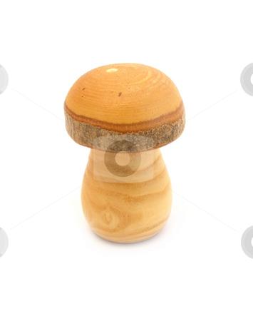 Wooden mushroom stock photo, Wooden mushroom by Robert Biedermann