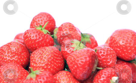 Strawberries stock photo, Strawberries isolated over a white background by Karen Arnold