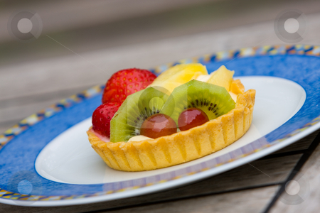 Fruit tart stock photo, Fruit custard tart on pretty blue plate by Karen Arnold