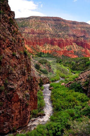 Desert Stream stock photo, A view from the Jemez Mountains in New Mexico by Brenton Kingsbauer