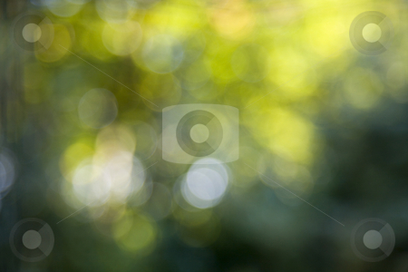 Green bokeh 2 stock photo, Nice abstract background of green and yellow bokeh by Karin Claus