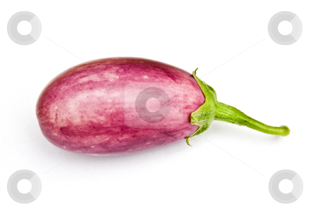 Asian egg plant stock photo, Asian egg plant by Robert Biedermann