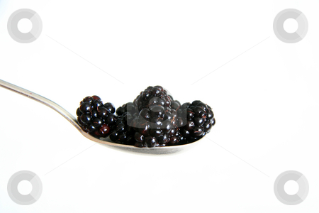Fresh Ripe Blackberry - Healthy Eating stock photo, Fresh Ripe Blackberry - Healthy Eating by Sam D'Cruz