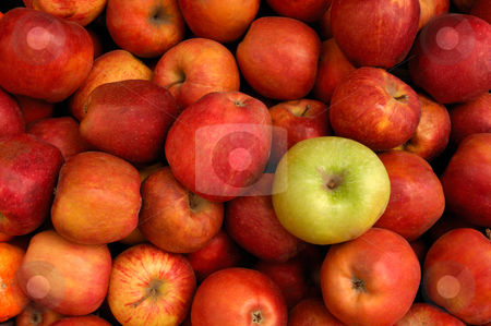 Apples stock photo, Image shows a selection of red apples with a green apple among them by Andreas Karelias