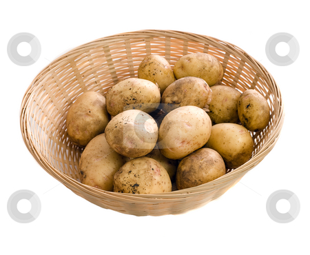 Garden Potatoes stock photo, A wicker basket of fresh garden potatoes, isolated against a white background by Richard Nelson