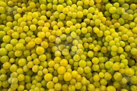 Green grapes. stock photo, Green grapes at a fruits stand in the Boqueria Market, in Barcelona, Spain. by Anibal Trejo