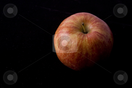 One Red Apple on Black stock photo, One red apple on a black background by Sharon Arnoldi