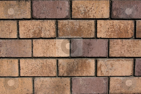 Red Brick Wall stock photo, Close up of a red brick wall by Darren Pattterson