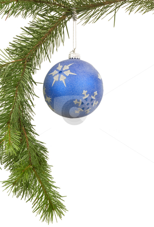 Bauble on Branch stock photo, Bauble hanging on branch with white background by John Teeter