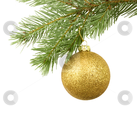 Golden Bauble stock photo, Golden bauble hanging on branch with white background by John Teeter