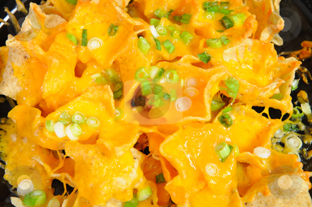Nachos stock photo, Plate of cheese nachos topped with thin sliced green onion by Lynn Bendickson