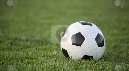 Soccer ball background stock photo, Black and white soccer ball on grass background by Stacy Barnett