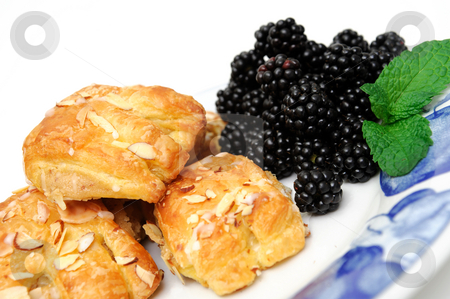 Bearclaws and Blackberries stock photo, Bearclaw pastries with fresh picked blackberries on a blue and white plate with a mint leaf garnish by Lynn Bendickson