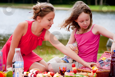 Young girls and the picknick box stock photo, Teenagers having a great time in the park by Frenk and Danielle Kaufmann