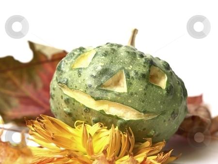 Halloween Pumpkin Head stock photo, A Halloween Pumpkin Head by Lars Kastilan