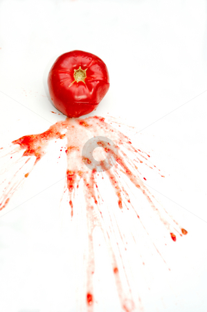 Smashed Tomato stock photo, A single bright red tomato splattered on a white background with juice and seeds spread across the isolation by Lynn Bendickson