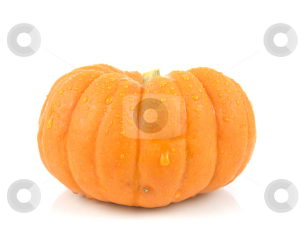 Small gourd pumpkin stock photo, Small gourd pumpkin on a white background by John Teeter