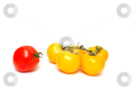 Red And Yellow Tomato stock photo, Many yellow tomatoes  with one red tomato by itself isolated on a white background by Lynn Bendickson