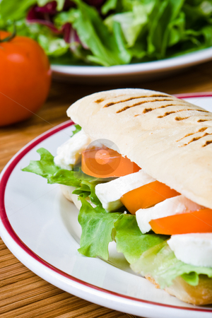 Mozzarella and tomato panini stock photo, Lettuce, tomato and mozzarella in a fresh panini by Robert Anthony