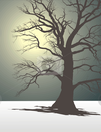 Tree In Winter Fog 2 stock vector clipart, Silhouette of an old tree in the winter and dull fog by Čerešňák