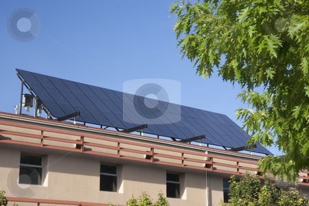 Large solar panel on building roof stock photo, Solar panel on building roof framed with green tree at Colorado State University campus, Fort Collins by Marek Uliasz