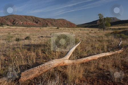 Red Mountain in northern Colorado stock photo, Red Mountain Open Space, semi desert landscape in northern Colorado (Laramie foothills) near Wyoming border, late summer by Marek Uliasz