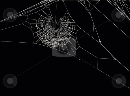 Spider's net stock photo, White spider's net isolated on a black background. by Sinisa Botas