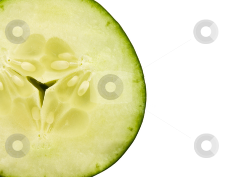 Cucumber Slice stock photo, Close up of a cucumber slice on a white background by John Teeter