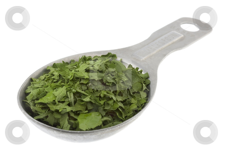 Tablespoon of dried parsley  stock photo, Dried parsley weeds on aluminum measuring tablespoon isolated on white by Marek Uliasz