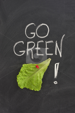Go green concept on blackboard stock photo, Lettuce leaf posted on a blackboard, go green concept - environment conservation or healthy diet by Marek Uliasz