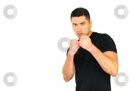 Ready to Fight stock photo, A portrait of a Caucasian man in ready to fight position isolated over white background by Denis Radovanovic