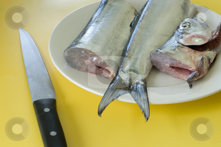 Fish filleting stock photo, A plate of fresh ribbon fish sliced in three waiting to be filleted by Stephen Gibson