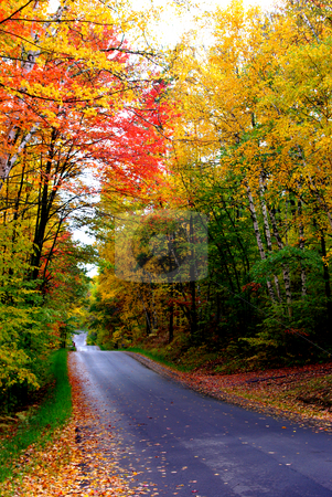 Fall Magic stock photo, Fall colors can be so dramatic it is hard to believe the are real as shown by the colorful display on this quiet road in north central Minnesota. by Dennis Thomsen