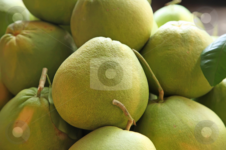 Pile of pomelo fruits stock photo, Pile of many pomelo citrus fruits whole unpeeled by Kheng Guan Toh
