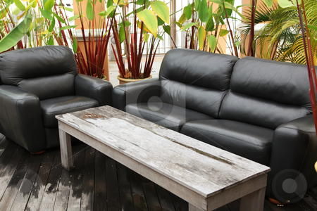 Outdoor tropical sofa stock photo, White leather sofa in outdoors tropical environment by Kheng Guan Toh