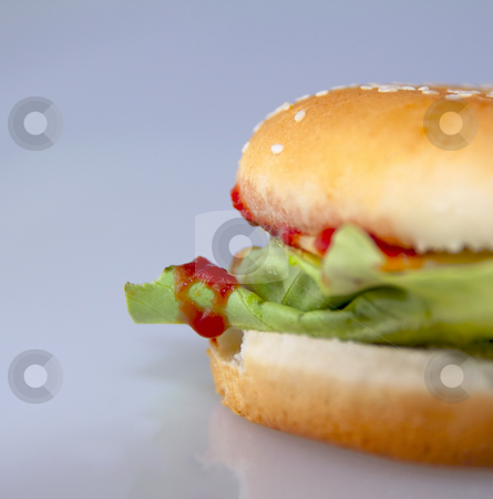 Cheeseburger stock photo, Cheeseburger with salad and tomato over a gray background by Fabio Alcini