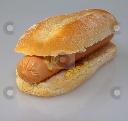 Hot dog stock photo, Isolated hot dog over a gray/white background by Fabio Alcini