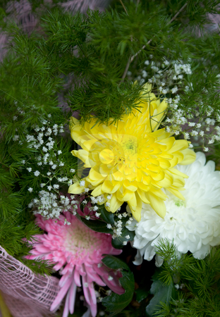 Chrysanthemum and aster stock photo, Bunch of flowers chrysanthemum and aster by Alexey Romanov