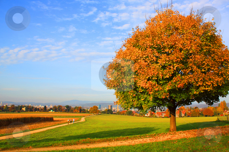 Autumn stock photo, Autumn by Julian Weber