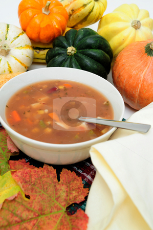 Veggie Soup stock photo, Vegetable soup in a bowl surrounded by fresh squash by Lynn Bendickson