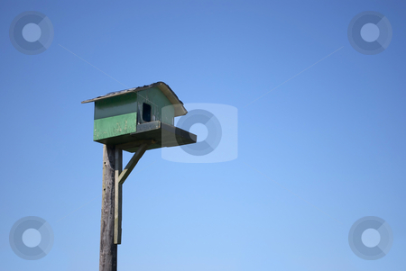 A home for Birds stock photo, Royalty free stock image of a Birdhouse against a clear blue sky surrounded by shrubbery, lighly vignetted by Paul Inkles